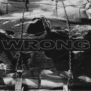 wrong-cover